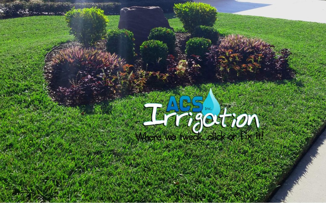Top 5 Effective Lawn Irrigation Tips During Fall