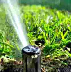 Authentic Custom Services Lawn Rotary Sprinkler Repairs