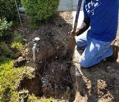 Authentic Custom Services Irrigation Installation
