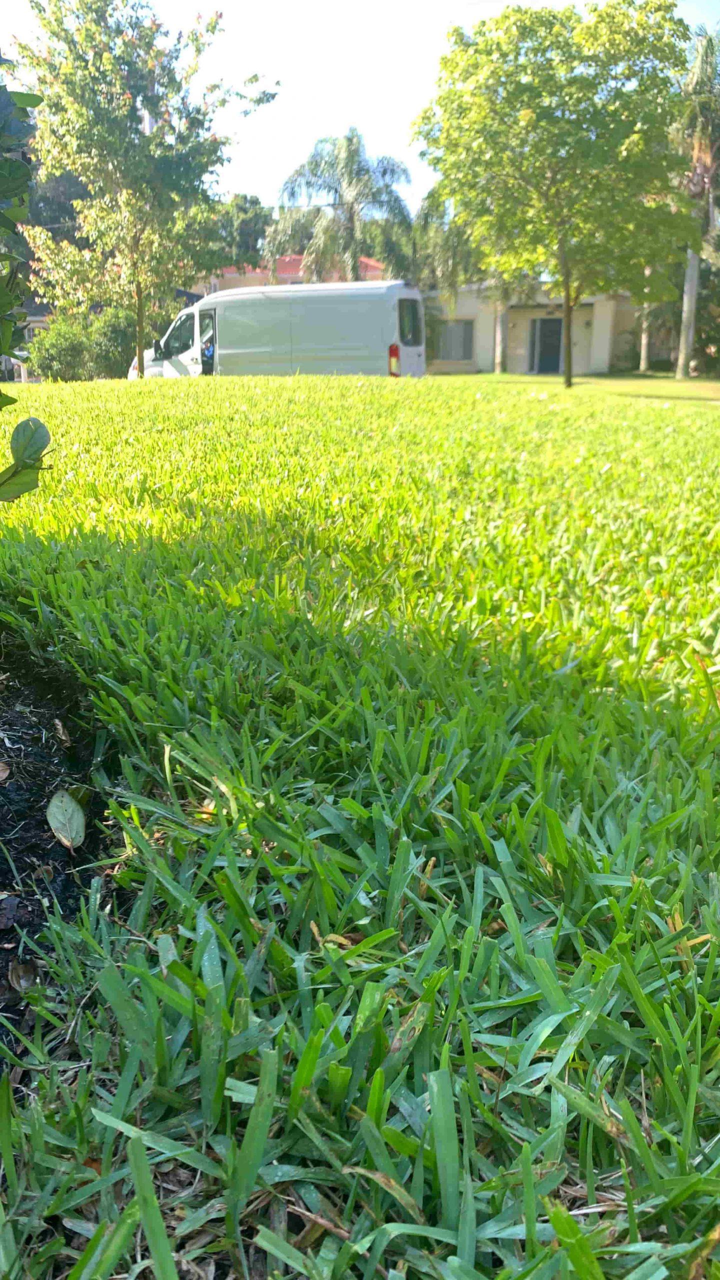 Premier Irrigation Repair